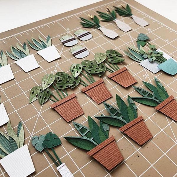 micro piante carta